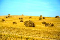 Feld nach Ernte-Stroh Lizenzfreies Stockbild