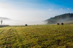 Feld nachdem dem Ernten im Nebel Stockbild