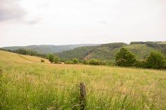 Feld nahe durch Nationalpark Eifel in Nord-Rhein-Westphali Deutschland stockfotografie