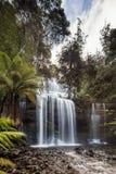 Feld-Nationalpark Russell Fallss n Mt, Teil von Tasmanien-` s Welt stockbild