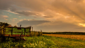 Feld. A nice landscape in the evening Royalty Free Stock Image