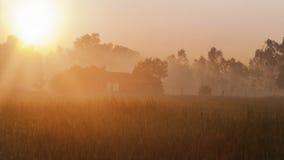Feld-Sonnenaufgang Stockfotografie