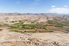 Feld-Terrassen von Colca-Schlucht, Peru Stockbild