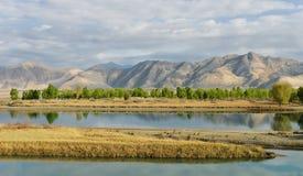 Feld in Tibet Stockbilder