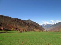 Feld in Tibet China Stockbilder