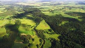 Feld und Bäume Lizenzfreie Stockfotografie