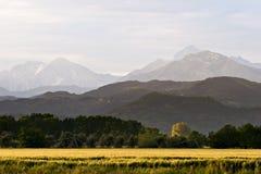Feld und Berge Stockbilder