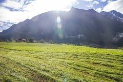 Feld und Berge Lizenzfreies Stockfoto