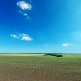 Feld und blauer Himmel Lizenzfreies Stockbild