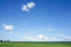 Feld und blauer Himmel Lizenzfreies Stockfoto