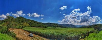 Feld und Himmel lizenzfreie stockbilder