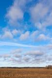Feld und Himmel. Lizenzfreie Stockfotos