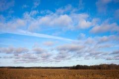 Feld und Himmel. Stockfoto