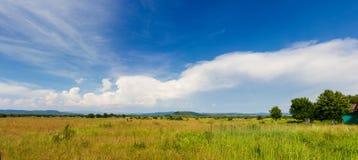 Feld und Hintergrund des bewölkten Himmels Stockbilder