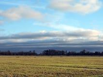 Feld und netter Himmel mit Fliegenvögeln, Litauen Lizenzfreie Stockfotos