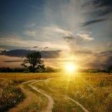 Feld und Schotterweg zum Sonnenuntergang Stockbilder