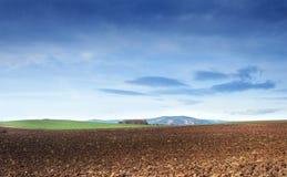 Feld und Wolken Stockfotografie
