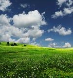 Feld und Wolken Lizenzfreies Stockfoto