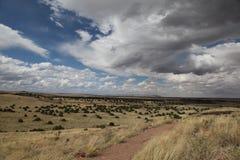 Feld und Wolken in der Perspektive Lizenzfreie Stockfotografie