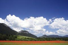 Feld unter Bergen 4 Lizenzfreies Stockbild