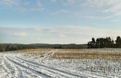 Feld unter Schnee. Stockbild