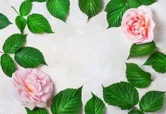 Feld verziert mit hellen Blumen auf konkretem Hintergrund, Leerstelle für einen Text Draufsicht, flache Lage Lizenzfreie Stockbilder