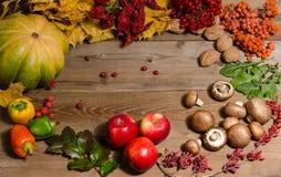 Feld vom Gemüse, von den Nüssen, von den Beeren und von den Früchten Lizenzfreie Stockfotografie