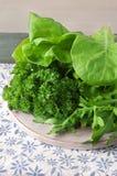 Feld vom Salat verlässt auf dem Tisch Stockbild