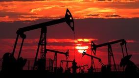 Feld von Öl pumpjacks gegen rote Dämmerung stock video footage