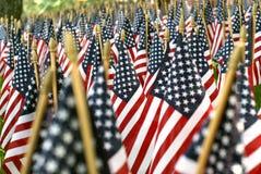 Feld von amerikanischen Flaggen 02608 Stockfoto