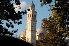 Feld von Baumasten zum Glockenturm und von Hauben von Santa Giustina in Padua in Venetien (Italien) Lizenzfreies Stockbild