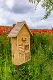 Feld von blühenden roten Mohnblumen mit einem Insektenhotel Stockfotos