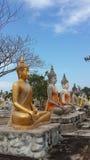 Feld von Buddha-Statuen lizenzfreies stockbild