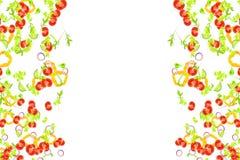 Feld von den frischen Salatbestandteilen, die unten auf weißen Hintergrund, Mittelmeerdiät und Nahrung mit Tomate, Salat, Pfeffer vektor abbildung