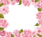 Feld von den rosafarbenen Rosen stock abbildung