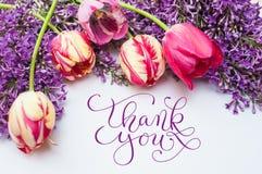 Feld von den Tulpen und Flieder mit Wörtern danken Ihnen Stockfotografie