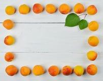 Feld von der reifen wohlriechenden Aprikose Diät gesundheit lizenzfreies stockbild