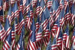 Feld von Flaggen lizenzfreie stockbilder