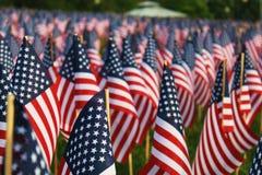 Feld von Flaggen Stockfoto