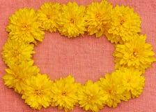Feld von gelben Blumen gegen einen Hintergrund des rosa Stoffes Stockfoto
