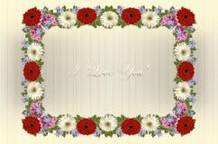 Feld von Gerberas, von Singrün und von Flammenblume mit auf gestreiftem weißem Hintergrund ich liebe dich grüßen Stockbilder