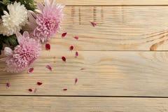 Feld von Herbstblumen von Chrysanthemen auf einem natürlichen hölzernen Hintergrund lizenzfreies stockfoto