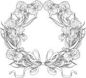 Feld von Irisblumen mit Bändern Lizenzfreie Stockfotografie