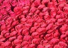 Feld von rosa Rosen Stockfoto
