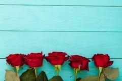 Feld von roten Rosen auf blauem hölzernem Hintergrund Stockbild