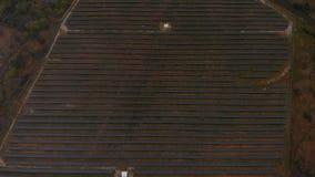 Feld von Sonnenkollektoren stock video