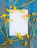Feld von wilden Blumen und von Papier Lizenzfreies Stockfoto