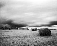 Feld vor dem Sturm lizenzfreie stockbilder