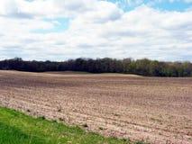 Feld in West-Michigan Lizenzfreie Stockbilder