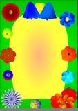 Feld Whitblumen Stockbilder